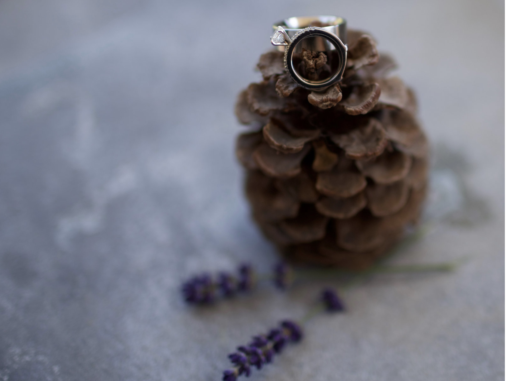 Wedding ring details - coordination by wildwood events